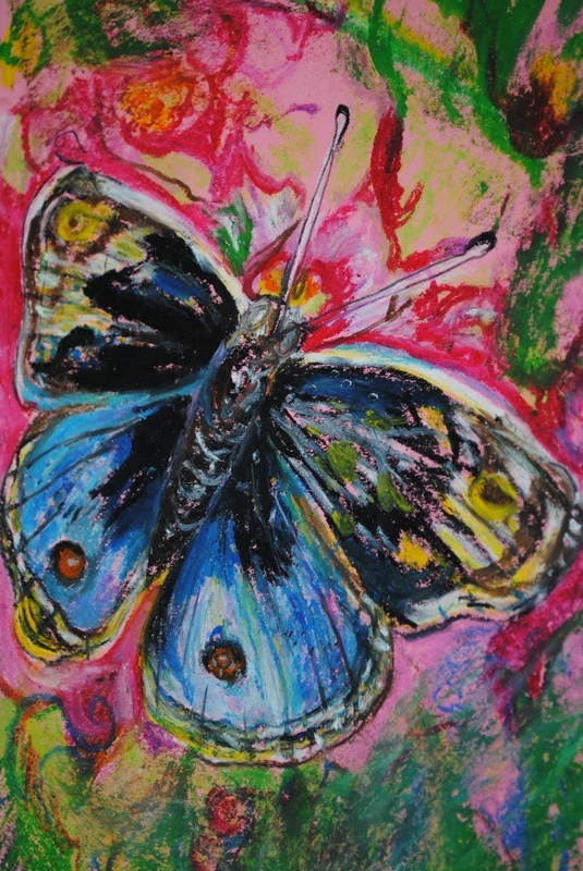 Butterfly- Oil Pastels