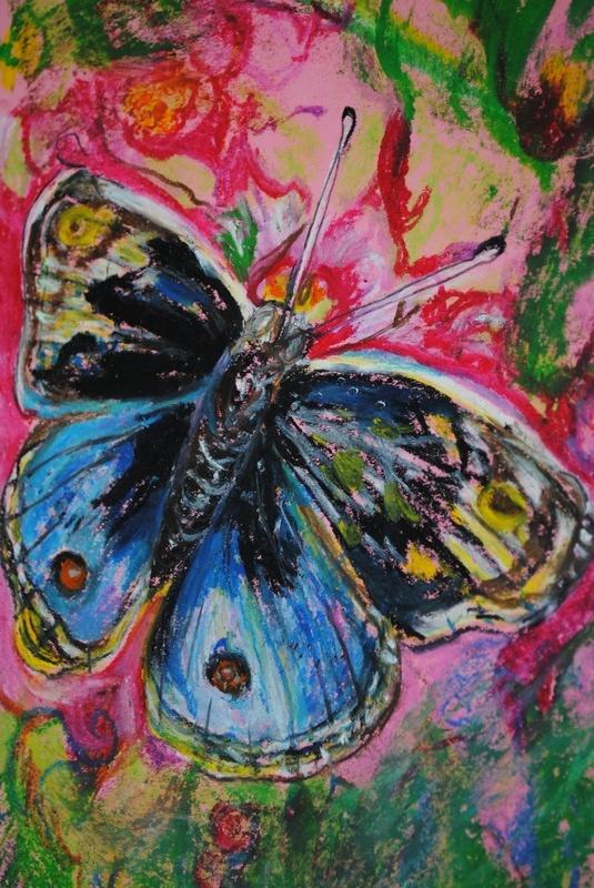 Butterfly- Oil Pastels