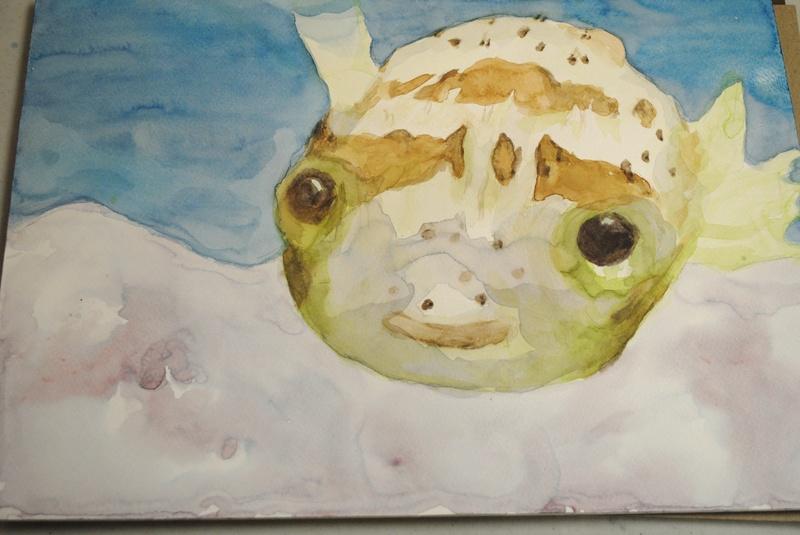 Puffer fish - student Watercolor
